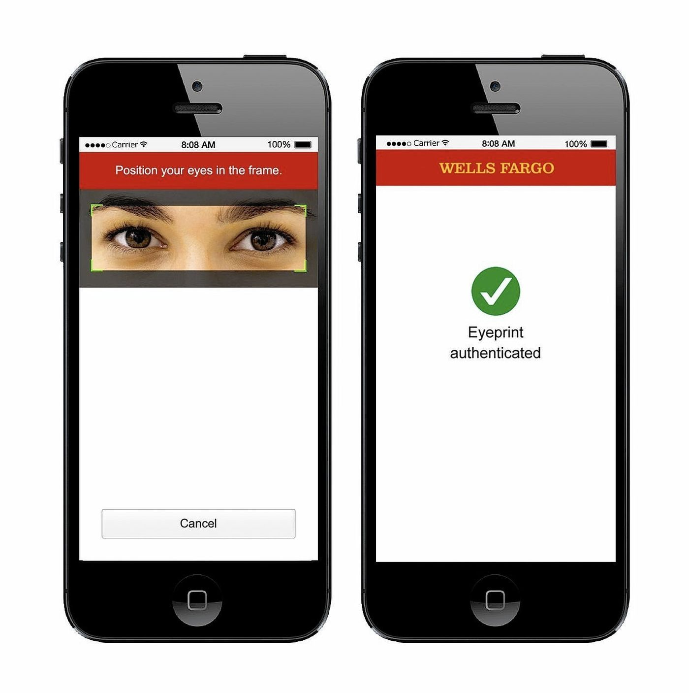 Wells Fargo Eye Scanning